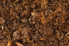 关闭土壤 免版税库存照片
