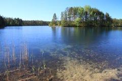 芬兰湖夏天 免版税库存照片