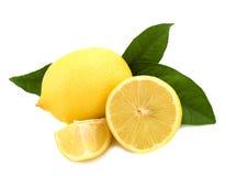 λεμόνια Στοκ Εικόνα