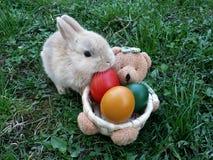 兔宝宝色的复活节彩蛋 免版税库存图片