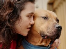 沮丧的狗女孩哀伤青少年 免版税图库摄影
