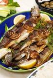 烤鳟鱼 免版税库存照片