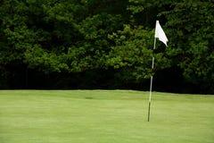 旗杆高尔夫球 免版税库存照片