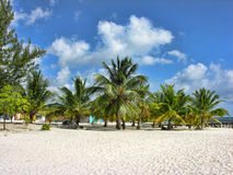 圣多明各,多米尼加共和国 图库摄影