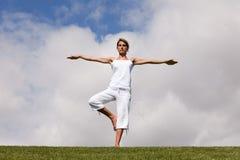 平衡生活 库存图片