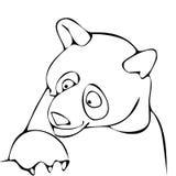 熊 向量例证