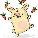 滑稽的兔宝宝 库存图片
