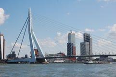 鹿特丹 免版税库存照片