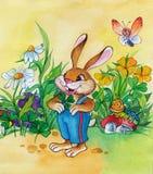 美妙的野兔 免版税库存图片
