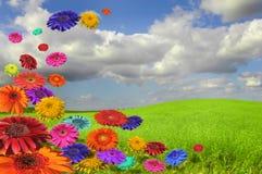 красит природу Стоковая Фотография