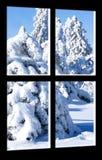 зима взгляда ландшафта Стоковые Фотографии RF