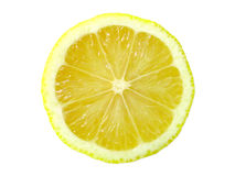 φέτα λεμονιών Στοκ φωτογραφία με δικαίωμα ελεύθερης χρήσης