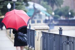 在雨之下的走的女孩 免版税库存照片