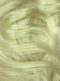 作为背景白肤金发的卷毛头发纹理 免版税库存照片