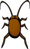 臭虫蟑螂 免版税库存图片