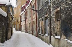 塔林在冬天 库存照片