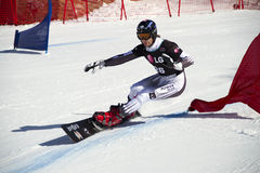 巨人并行障碍滑雪 免版税图库摄影