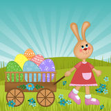 看板卡复活节问候兔子 免版税库存照片