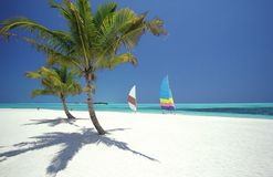 海滩热带的马尔代夫 免版税库存图片
