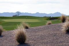 гольф пустыни курса Аризоны Стоковое Изображение