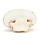 蘑菇片式 库存图片