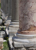покрышка Ливана Стоковое Изображение RF