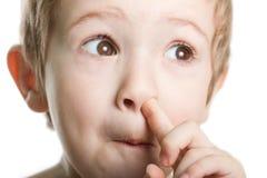 рудоразборка носа Стоковые Изображения