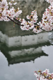城堡大阪反映 免版税库存照片