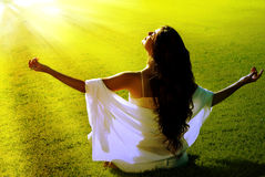 раздумье поля лучей солнечное Стоковые Изображения RF