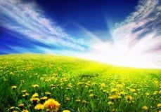 весна ландшафта Стоковые Фото