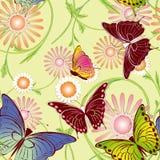 无缝蝴蝶花卉的模式 库存照片