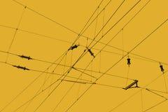 顶上的线路 免版税图库摄影