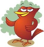 鸟红色 免版税库存照片