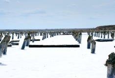 咸的湖 免版税库存图片