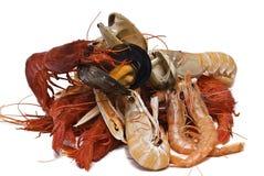поменянные продукты моря Стоковое Изображение