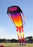 巨型风筝 库存照片
