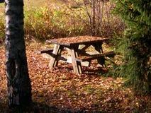 木的野餐桌 免版税库存照片