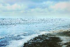 海滩长的风暴华盛顿冬天 免版税库存图片