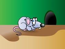 聪明灰色的鼠标 免版税库存图片