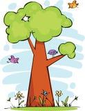 滑稽的结构树 免版税库存图片