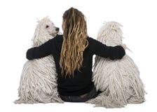 被捆绑的女孩长卷毛狗标准二白色 免版税库存图片