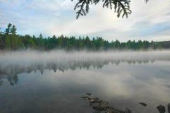 湖薄雾上升的原野 库存图片