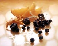 浆果桔子 库存图片