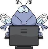 臭虫计算机 库存图片