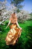 золото платья Стоковое Фото