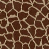 重复无缝的纹理的长颈鹿模式 免版税库存图片