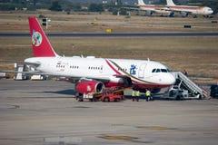 αλκυόνη αερογραμμών Στοκ εικόνες με δικαίωμα ελεύθερης χρήσης
