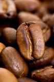μακρο πλάνο καφέ φασολιών Στοκ φωτογραφία με δικαίωμα ελεύθερης χρήσης