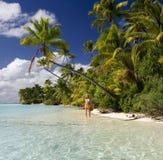热带库克群岛的天堂 免版税库存照片