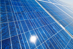 可选择能源太阳工厂的次幂 免版税图库摄影